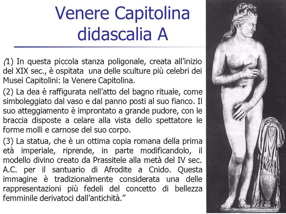 36 Venere Capitolina didascalia A (1) In questa piccola stanza poligonale, creata allinizio del XIX sec., è ospitata una delle sculture più celebri de
