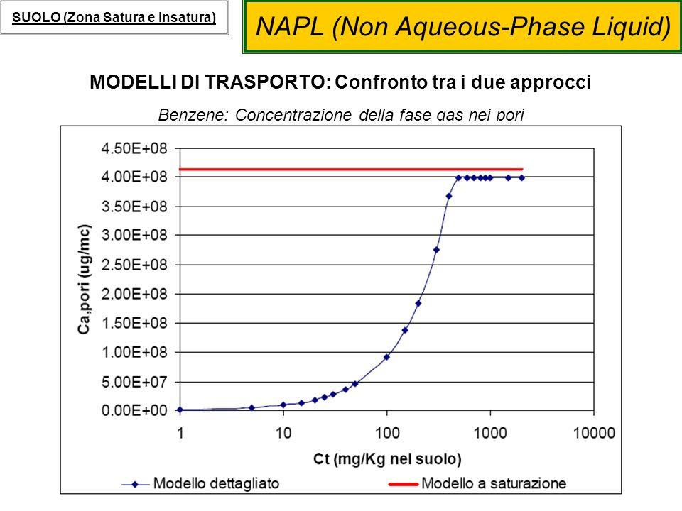 NAPL (Non Aqueous-Phase Liquid) SUOLO (Zona Satura e Insatura) MODELLI DI TRASPORTO: Confronto tra i due approcci Benzene: Concentrazione della fase g