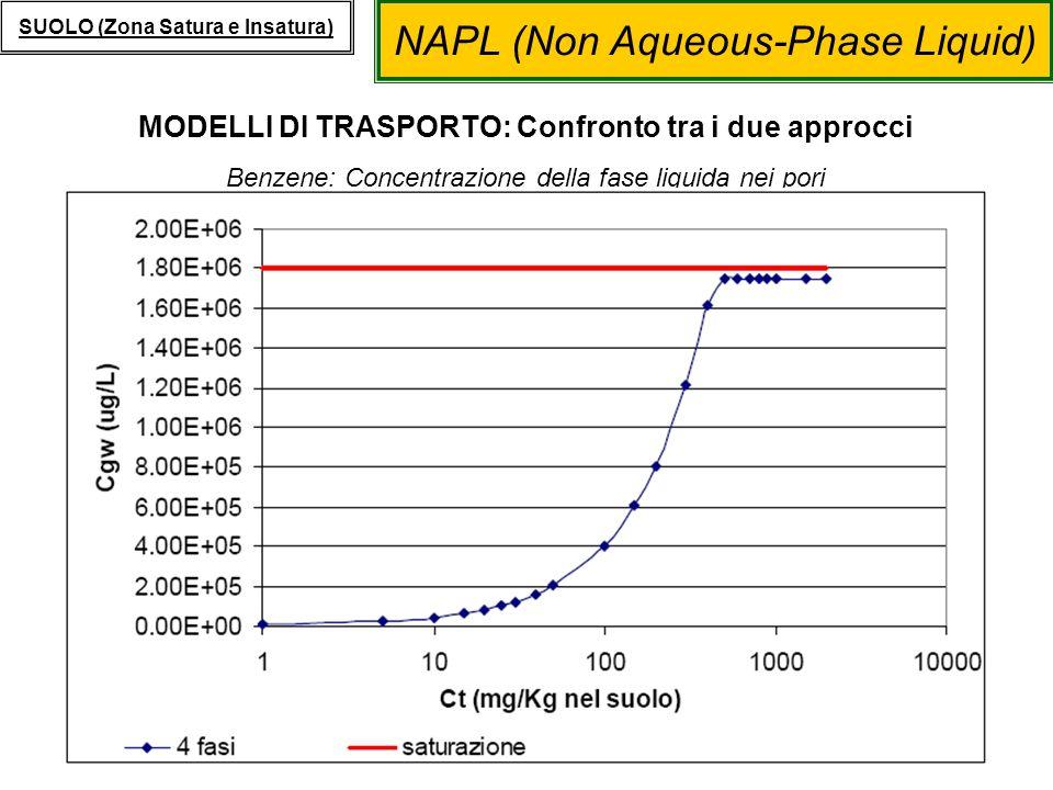 NAPL (Non Aqueous-Phase Liquid) SUOLO (Zona Satura e Insatura) MODELLI DI TRASPORTO: Confronto tra i due approcci Benzene: Concentrazione della fase l