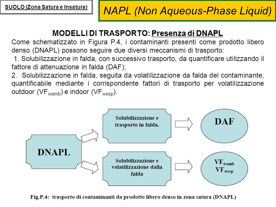 NAPL (Non Aqueous-Phase Liquid) SUOLO (Zona Satura e Insatura) Presenza di DNAPL MODELLI DI TRASPORTO: Presenza di DNAPL Come schematizzato in Figura