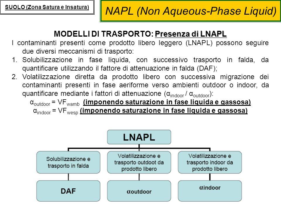 NAPL (Non Aqueous-Phase Liquid) SUOLO (Zona Satura e Insatura) Presenza di LNAPL MODELLI DI TRASPORTO: Presenza di LNAPL I contaminanti presenti come