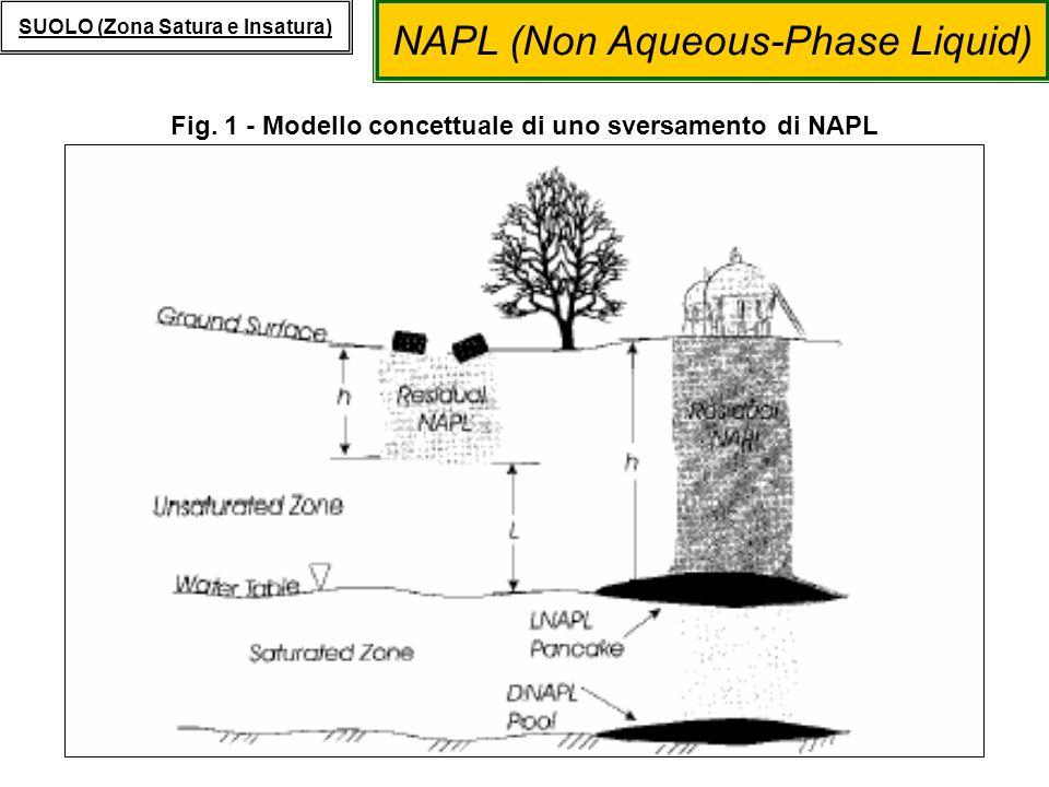 NAPL (Non Aqueous-Phase Liquid) SUOLO (Zona Satura e Insatura) Presenza di LNAPL MODELLI DI TRASPORTO: Presenza di LNAPL I contaminanti presenti come prodotto libero leggero (LNAPL) possono seguire due diversi meccanismi di trasporto: 1.Solubilizzazione in fase liquida, con successivo trasporto in falda, da quantificare utilizzando il fattore di attenuazione in falda (DAF); 2.Volatilizzazione diretta da prodotto libero con successiva migrazione dei contaminanti presenti in fase aeriforme verso ambienti outdoor o indoor, da quantificare mediante i fattori di attenuazione (α indoor / α outdoor ): α outdoor = VF wamb (imponendo saturazione in fase liquida e gassosa) α indoor = VF wesp (imponendo saturazione in fase liquida e gassosa)