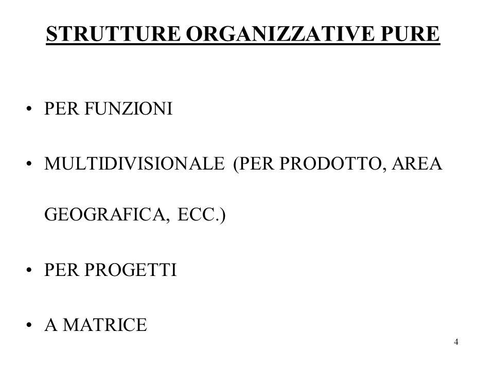 4 STRUTTURE ORGANIZZATIVE PURE PER FUNZIONI MULTIDIVISIONALE (PER PRODOTTO, AREA GEOGRAFICA, ECC.) PER PROGETTI A MATRICE