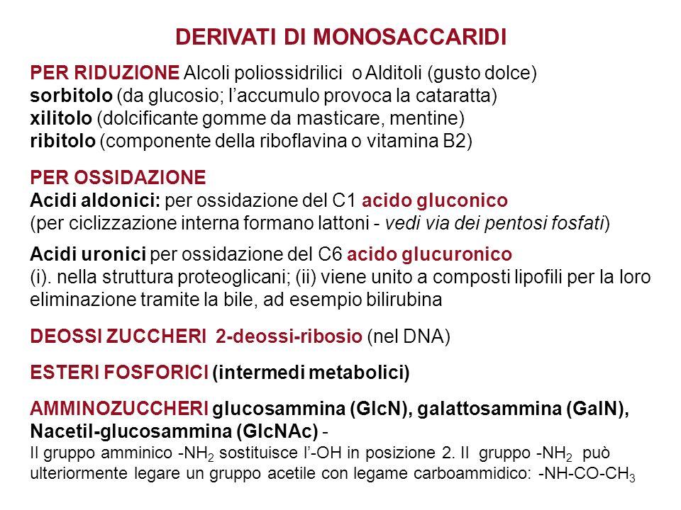 DERIVATI DI MONOSACCARIDI PER RIDUZIONE Alcoli poliossidrilici o Alditoli (gusto dolce) sorbitolo (da glucosio; laccumulo provoca la cataratta) xilito