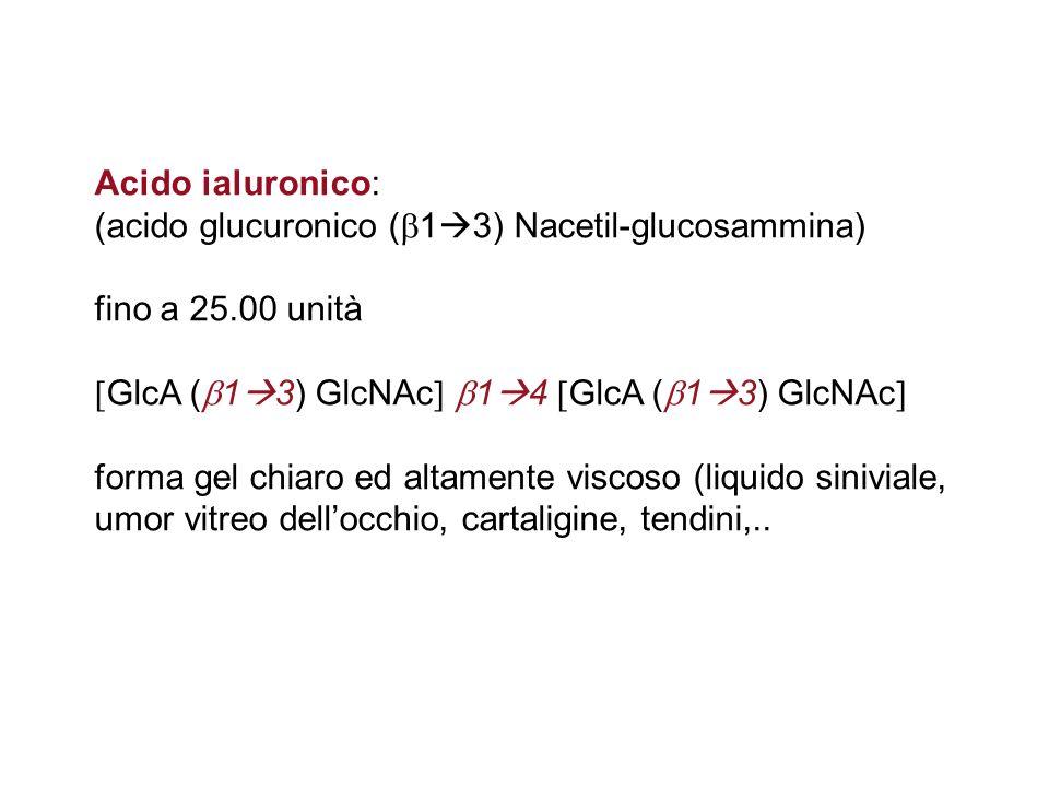Acido ialuronico: (acido glucuronico ( 1 3) Nacetil-glucosammina) fino a 25.00 unità GlcA ( 1 3) GlcNAc 1 4 GlcA ( 1 3) GlcNAc forma gel chiaro ed alt