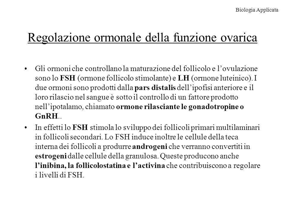 Regolazione ormonale della funzione ovarica Gli ormoni che controllano la maturazione del follicolo e lovulazione sono lo FSH (ormone follicolo stimol
