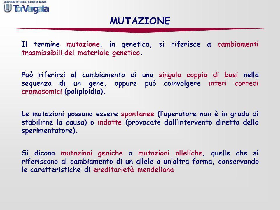 MUTAZIONE Il termine mutazione, in genetica, si riferisce a cambiamenti trasmissibili del materiale genetico. Può riferirsi al cambiamento di una sing