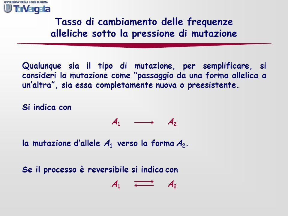 Cambiamenti nella frequenza allelica per effetto di un processo di mutazione bidirezionale; p = freq A Esempio: = 0,00003, = 0,00001 Frequenza allequilibrio: p = /( + ) = 0,25 Due situazioni opposte: p = 1 (A fissato) p = 0 (A assente) A 1 A 2