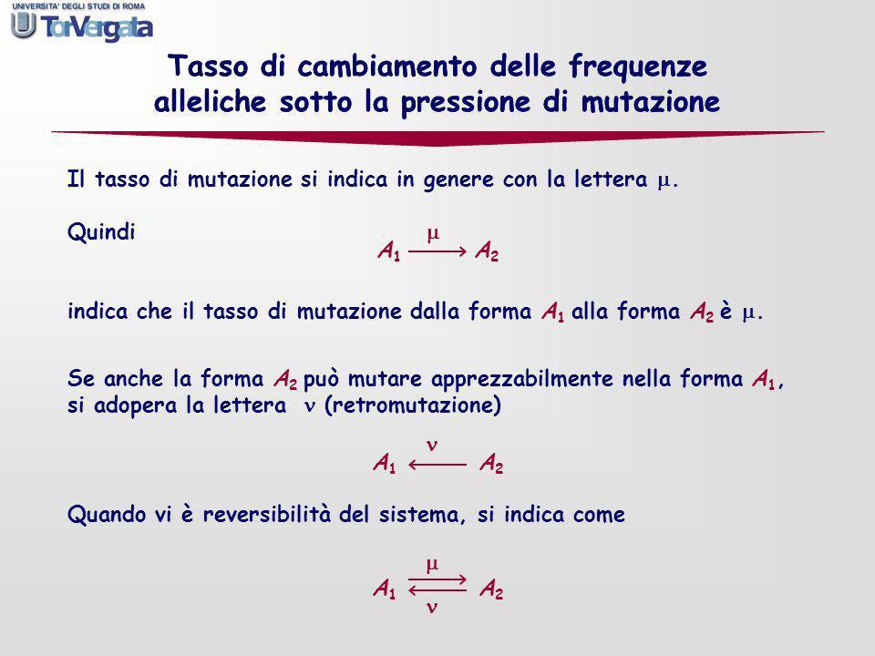 Quindi A 1 A 2 indica che il tasso di mutazione dalla forma A 1 alla forma A 2 è. Tasso di cambiamento delle frequenze alleliche sotto la pressione di