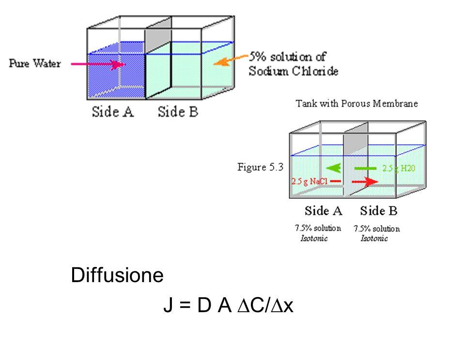Diffusione J = D A C/ x