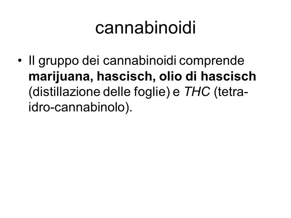 cannabinoidi I cannabinoidi possono essere fumati o ingeriti.