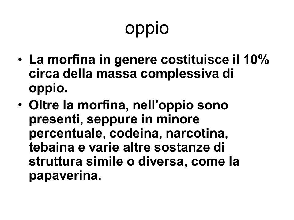 Eroina, Morfina L eroina è una sostanza semi-sintetica derivata dalla morfina, principale alcaloide dell oppio in cui è contenuta e da cui viene ricavata.