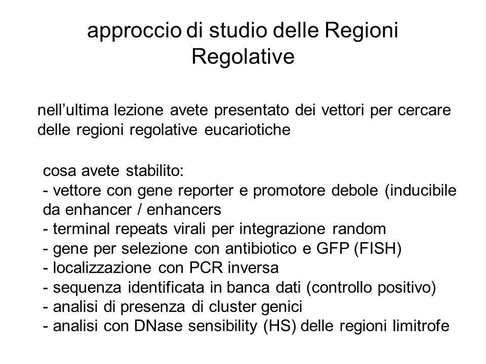 approccio di studio delle Regioni Regolative nellultima lezione avete presentato dei vettori per cercare delle regioni regolative eucariotiche cosa av