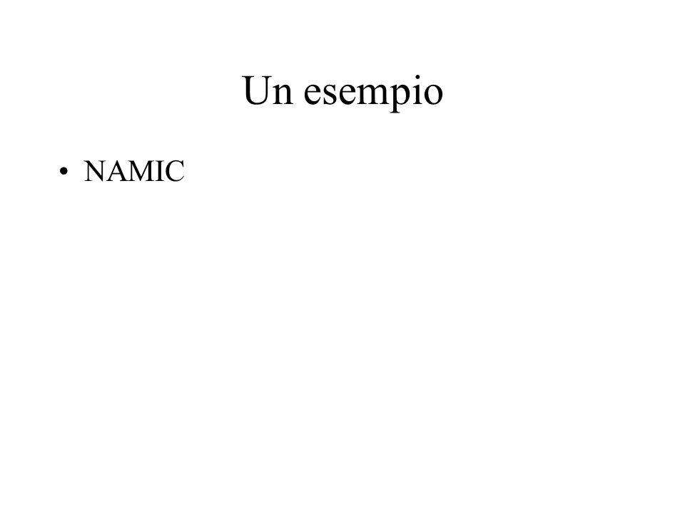 Un esempio NAMIC