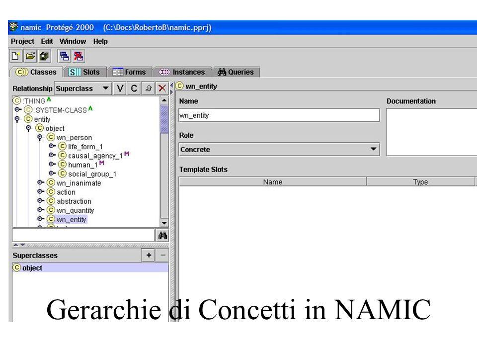 Gerarchie di Concetti in NAMIC