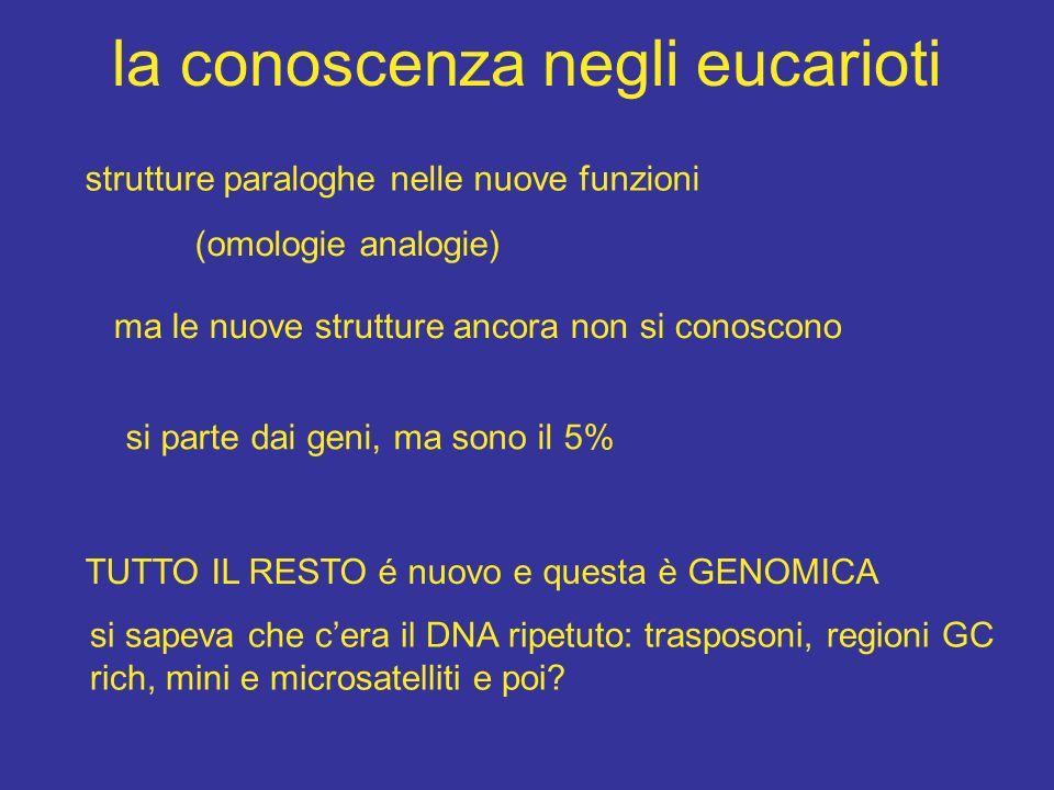 la conoscenza negli eucarioti strutture paraloghe nelle nuove funzioni (omologie analogie) ma le nuove strutture ancora non si conoscono si parte dai