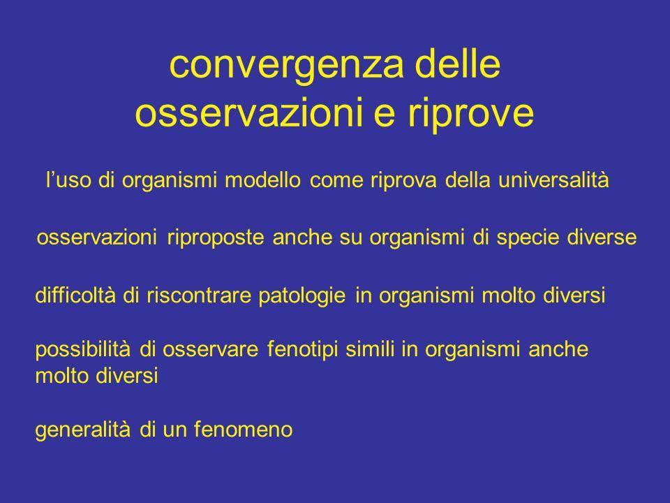 convergenza delle osservazioni e riprove luso di organismi modello come riprova della universalità osservazioni riproposte anche su organismi di speci