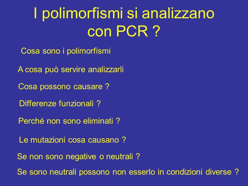 I polimorfismi si analizzano con PCR ? Cosa sono i polimorfismi A cosa può servire analizzarli Cosa possono causare ? Differenze funzionali ? Perché n