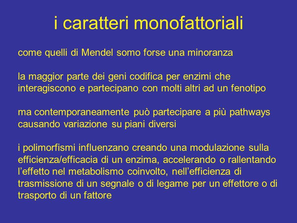 i caratteri monofattoriali come quelli di Mendel somo forse una minoranza la maggior parte dei geni codifica per enzimi che interagiscono e partecipan