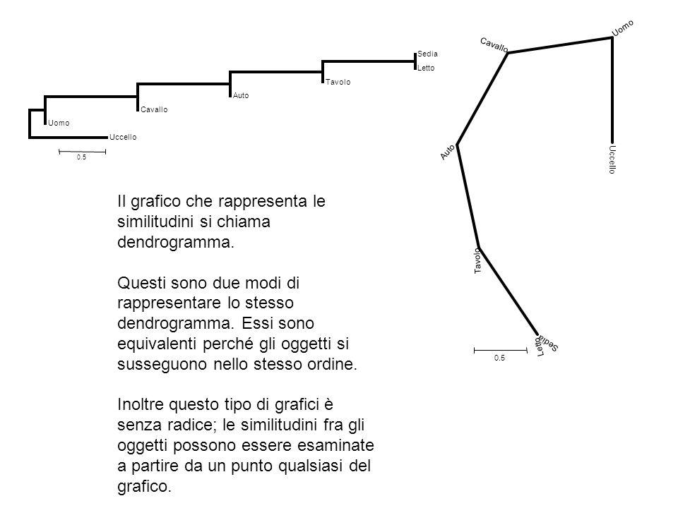 Sedia Letto Tavolo Auto Cavallo Uomo Uccello 0.5 Sedia Letto Tavolo Auto Cavallo Uomo Uccello 0.5 Il grafico che rappresenta le similitudini si chiama dendrogramma.