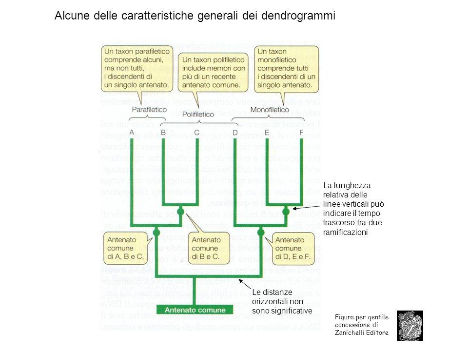 Figure 19.3 Genomes 3 (© Garland Science 2007)