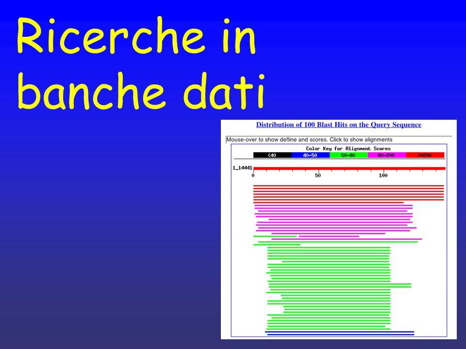 Ricerche in banche dati