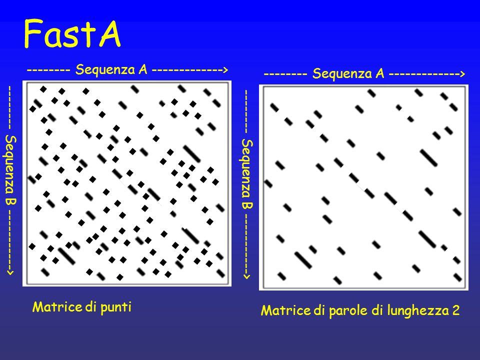 FastA -------- Sequenza A -------------> -------- Sequenza B -----------> -------- Sequenza A -------------> -------- Sequenza B -----------> Matrice di punti Matrice di parole di lunghezza 2
