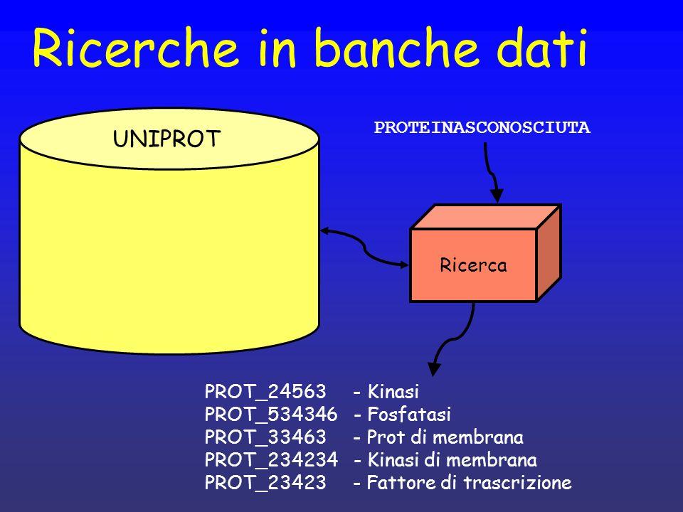 Ricerche in banche dati UNIPROT PROTEINASCONOSCIUTA Ricerca PROT_24563 - Kinasi PROT_534346 - Fosfatasi PROT_33463 - Prot di membrana PROT_234234 - Kinasi di membrana PROT_23423 - Fattore di trascrizione