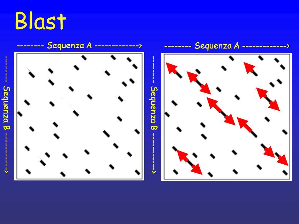 Blast -------- Sequenza A -------------> -------- Sequenza B -----------> -------- Sequenza A -------------> -------- Sequenza B ----------->
