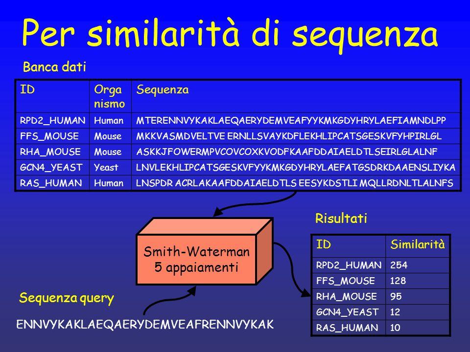 Per similarità di sequenza IDOrga nismo Sequenza RPD2_HUMANHumanMTERENNVYKAKLAEQAERYDEMVEAFYYKMKGDYHRYLAEFIAMNDLPP FFS_MOUSEMouseMKKVASMDVELTVE ERNLLSVAYKDFLEKHLIPCATSGESKVFYHPIRLGL RHA_MOUSEMouseASKKJFOWERMPVCOVCOXKVODFKAAFDDAIAELDTLSEIRLGLALNF GCN4_YEASTYeastLNVLEKHLIPCATSGESKVFYYKMKGDYHRYLAEFATGSDRKDAAENSLIYKA RAS_HUMANHumanLNSPDR ACRLAKAAFDDAIAELDTLS EESYKDSTLI MQLLRDNLTLALNFS IDSimilarità RPD2_HUMAN254 FFS_MOUSE128 RHA_MOUSE95 GCN4_YEAST12 RAS_HUMAN10 Smith-Waterman 5 appaiamenti ENNVYKAKLAEQAERYDEMVEAFRENNVYKAK Sequenza query Risultati Banca dati