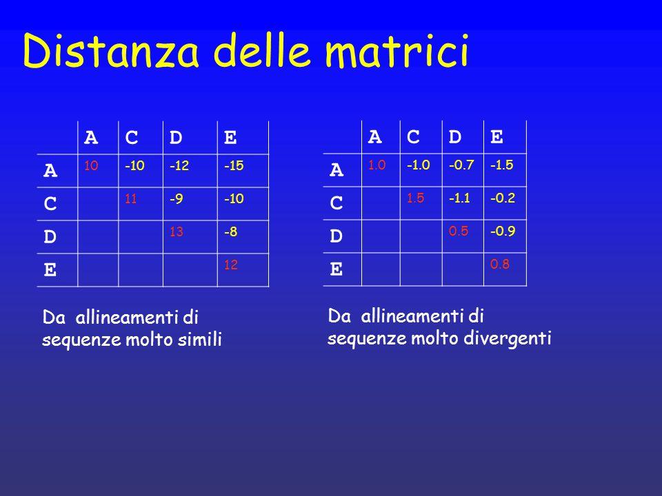 Distanza delle matrici ACDE A 10-10-12-15 C 11-9-10 D 13-8 E 12 ACDE A 1.0-0.7-1.5 C 1.5-1.1-0.2 D 0.5-0.9 E 0.8 Da allineamenti di sequenze molto sim