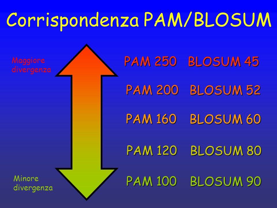 Corrispondenza PAM/BLOSUM Maggiore divergenza Minore divergenza PAM 100 BLOSUM 90 PAM 120 BLOSUM 80 PAM 160 BLOSUM 60 PAM 200 BLOSUM 52 PAM 250 BLOSUM
