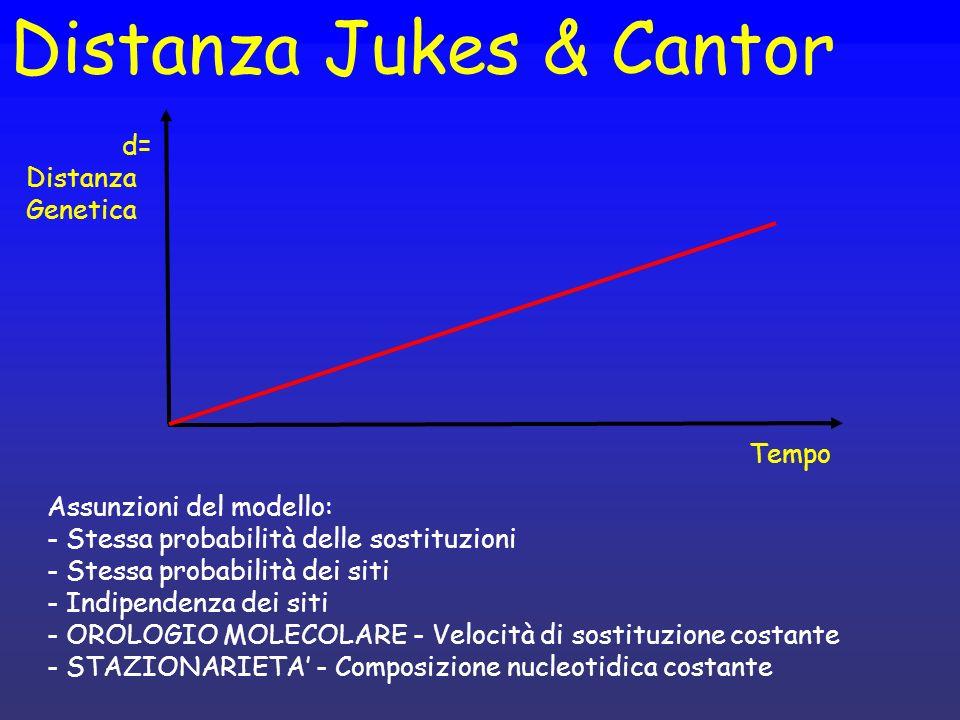Distanza Jukes & Cantor Tempo d= Distanza Genetica Assunzioni del modello: - Stessa probabilità delle sostituzioni - Stessa probabilità dei siti - Ind