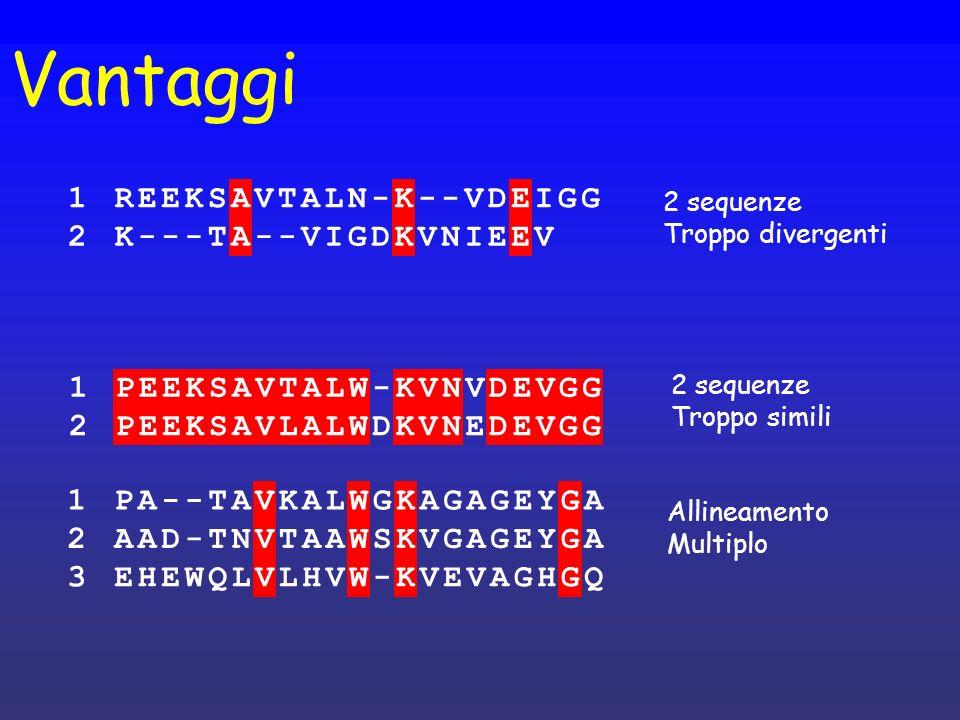 Vantaggi 1PEEKSAVTALW-KVNVDEVGG 2PEEKSAVLALWDKVNEDEVGG 1PA--TAVKALWGKAGAGEYGA 2AAD-TNVTAAWSKVGAGEYGA 3EHEWQLVLHVW-KVEVAGHGQ 2 sequenze Troppo simili A