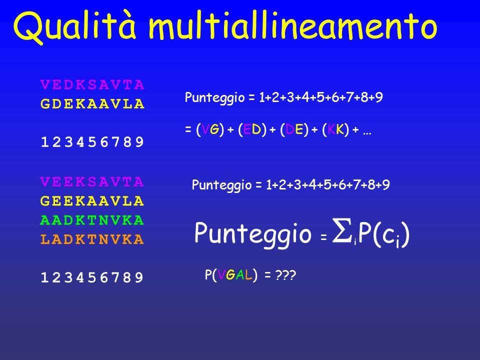 Qualità multiallineamento Punteggio = 1+2+3+4+5+6+7+8+9 = (VG) + (ED) + (DE) + (KK) + … VEEKSAVTA GEEKAAVLA AADKTNVKA LADKTNVKA 123456789 VEDKSAVTA GD
