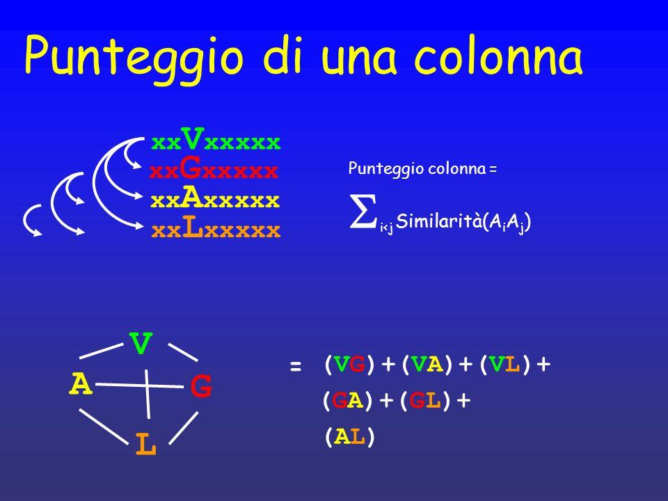 Punteggio di una colonna xx A xxxxx xx V xxxxx xx G xxxxx xx L xxxxx Punteggio colonna = i<j Similarità(A i A j ) (VG)+(VA)+(VL)+ (GA)+(GL)+ (AL)(AL)