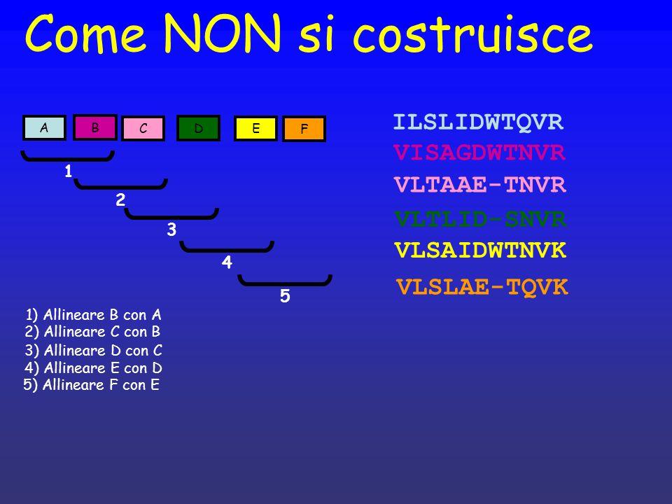 Come NON si costruisce F E D C B A VLSAIDWTNVK VISAGDWTNVR VLTAAE-TNVR ILSLIDWTQVR 1 2 1) Allineare B con A 2) Allineare C con B 3) Allineare D con C