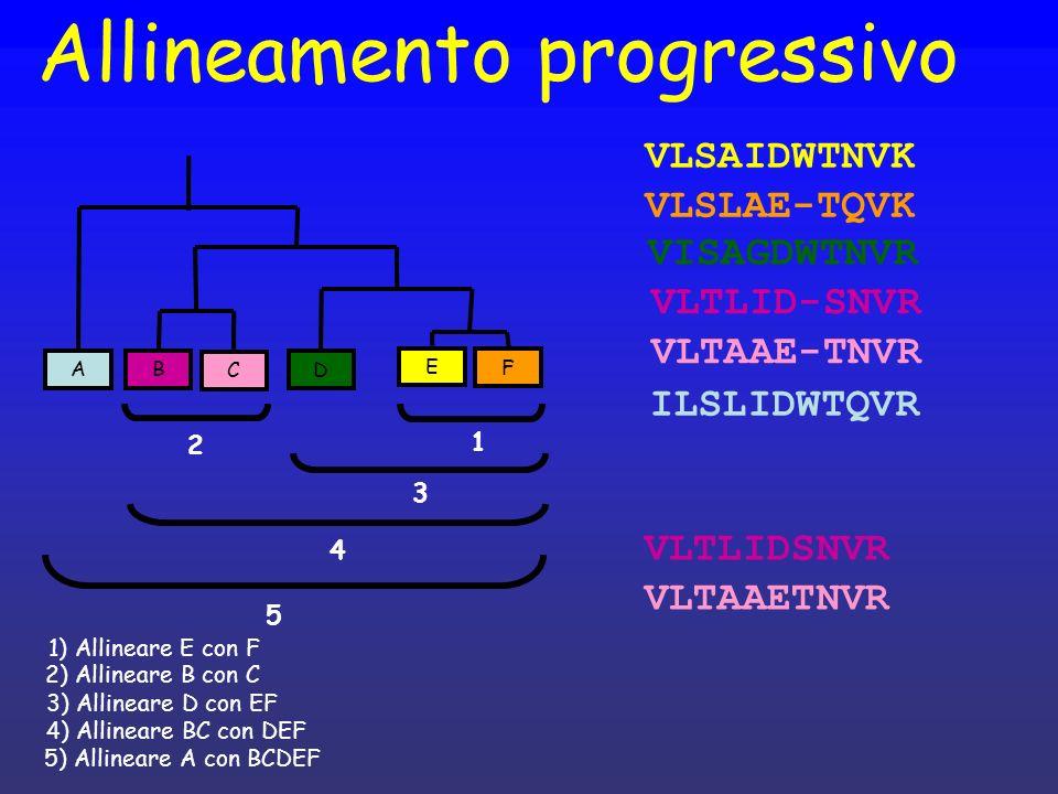 Allineamento progressivo F E D C B A VLSAIDWTNVK VLSLAE-TQVK VLTLIDSNVR VLTAAETNVR VISAGDWTNVR VLTLID-SNVR VLTAAE-TNVR ILSLIDWTQVR 1 2 3 4 5 1) Alline