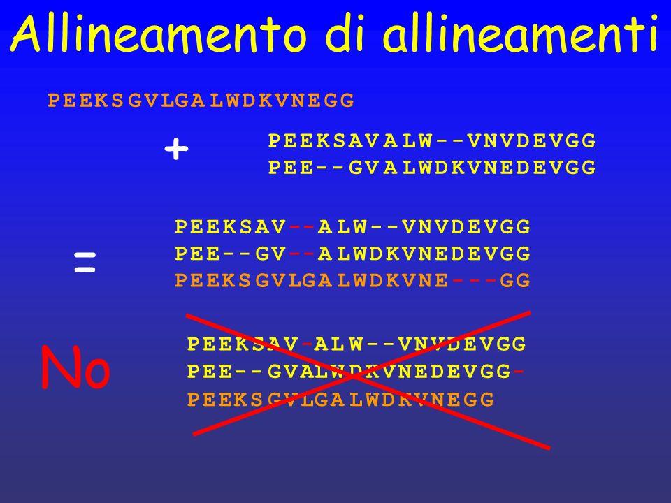 Allineamento di allineamenti PEEKSAV--ALW--VNVDEVGG PEE--GV--ALWDKVNEDEVGG PEEKSGVLGALWDKVNE---GG + PEEKSAVALW--VNVDEVGG PEE--GVALWDKVNEDEVGG PEEKSGVL