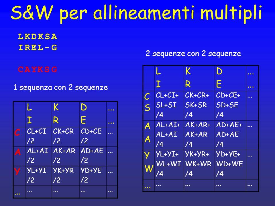 LILI KRKR DEDE... C CL+CI /2 CK+CR /2 CD+CE /2... A AL+AI /2 AK+AR /2 AD+AE /2... Y YL+YI /2 YK+YR /2 YD+YE /2... … LILI KRKR DEDE CSCS CL+CI+ SL+SI /