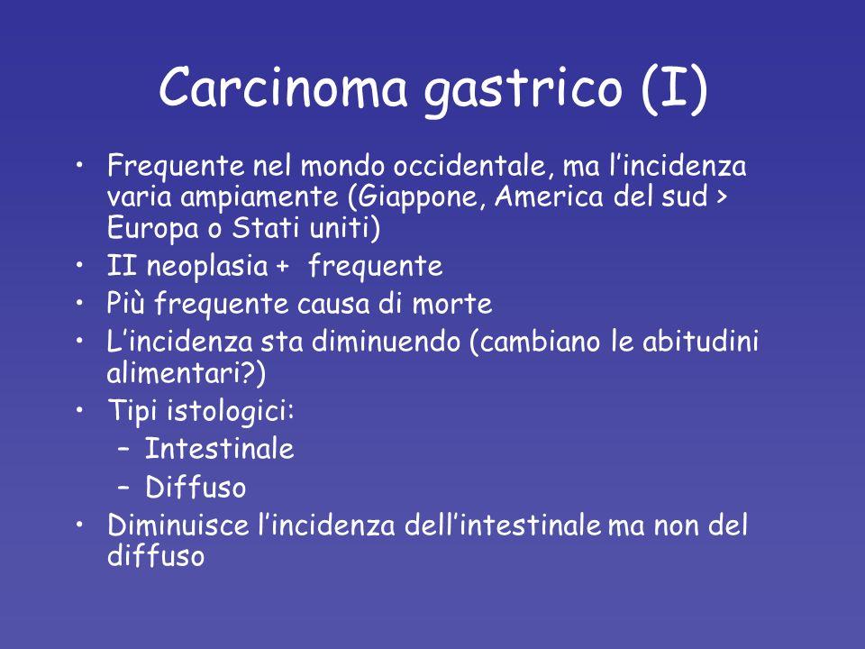 Carcinoma gastrico (I) Frequente nel mondo occidentale, ma lincidenza varia ampiamente (Giappone, America del sud > Europa o Stati uniti) II neoplasia