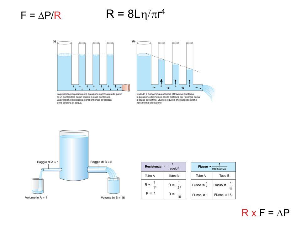 R = 8L r 4 F = P/R R x F = P
