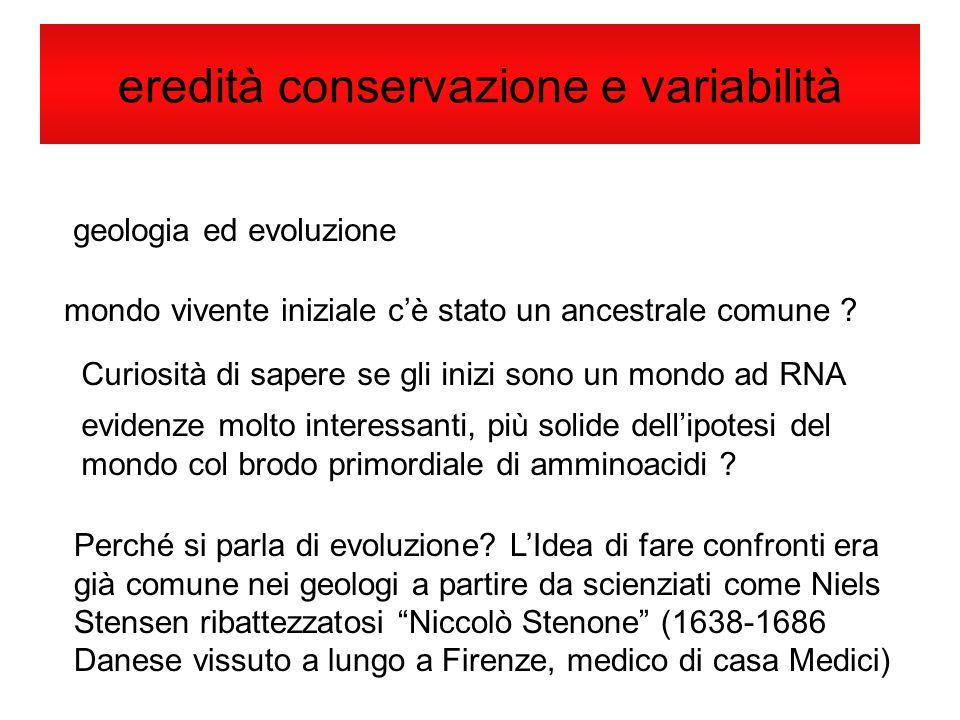 eredità conservazione e variabilità geologia ed evoluzione mondo vivente iniziale cè stato un ancestrale comune ? Curiosità di sapere se gli inizi son