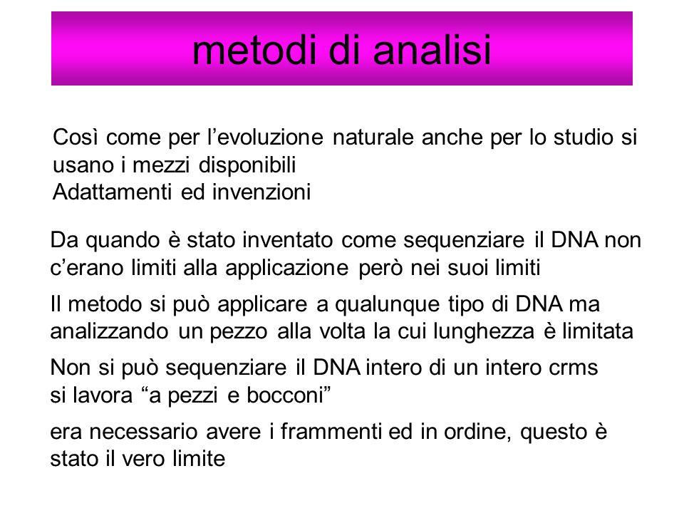 metodi di analisi Così come per levoluzione naturale anche per lo studio si usano i mezzi disponibili Adattamenti ed invenzioni Da quando è stato inve