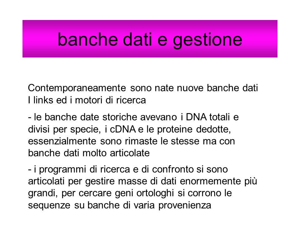 banche dati e gestione Contemporaneamente sono nate nuove banche dati I links ed i motori di ricerca - le banche date storiche avevano i DNA totali e