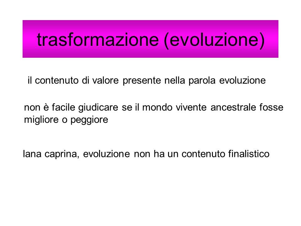 trasformazione (evoluzione) il contenuto di valore presente nella parola evoluzione non è facile giudicare se il mondo vivente ancestrale fosse miglio