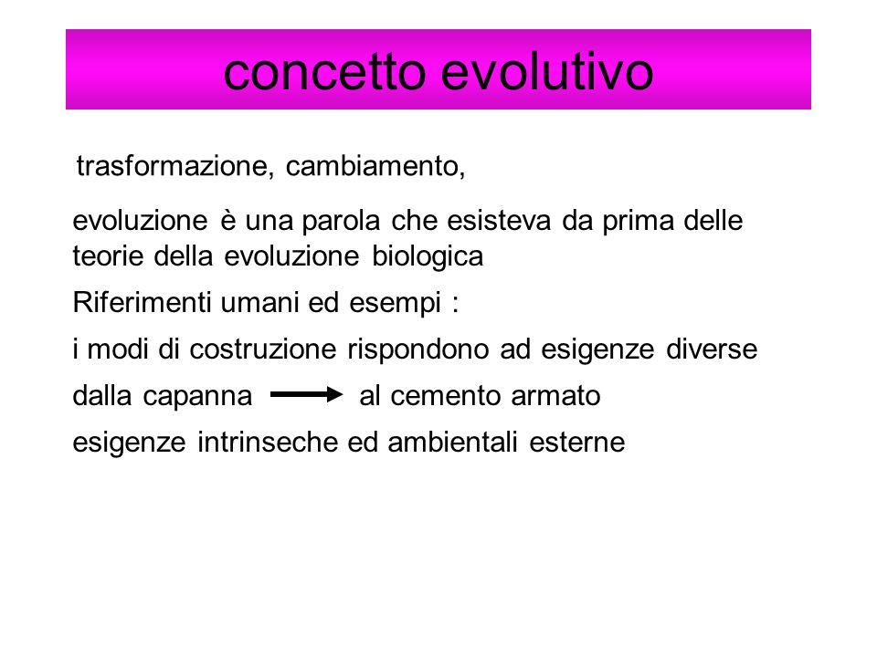 concetto evolutivo trasformazione, cambiamento, evoluzione è una parola che esisteva da prima delle teorie della evoluzione biologica Riferimenti uman