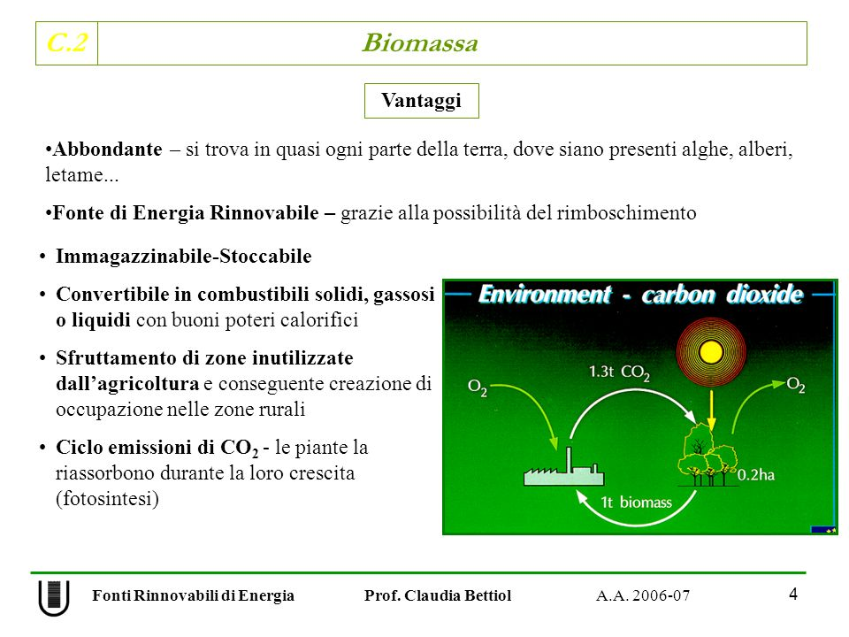 C.2 Biomassa 15 Fonti Rinnovabili di Energia Prof.