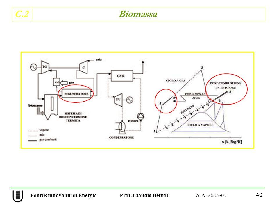 C.2 Biomassa 40 Fonti Rinnovabili di Energia Prof. Claudia Bettiol A.A. 2006-07