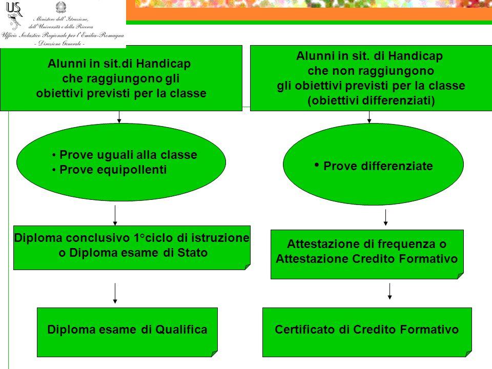 Alunni in sit.di Handicap che raggiungono gli obiettivi previsti per la classe Alunni in sit. di Handicap che non raggiungono gli obiettivi previsti p